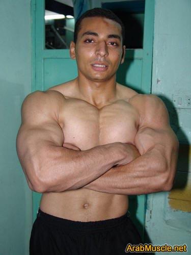 Bodybuilder Ahmed Abdel Hamid From Sohag